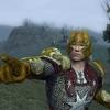Soldier of Arthedain