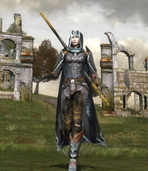 This outfit uses a chestpiece and leggings from one set, and accessorises with shoulders and boots from another set.