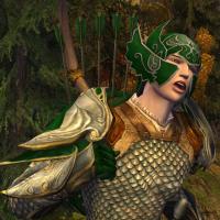 Warrior of Imladris
