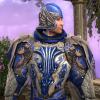 Knight of Dol Amroth