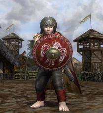 The shield was chosen to complement the red on the leggings and cloak.