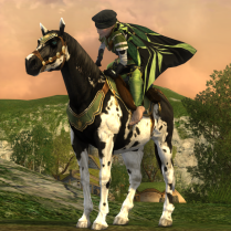 An outfit made to match a steed.