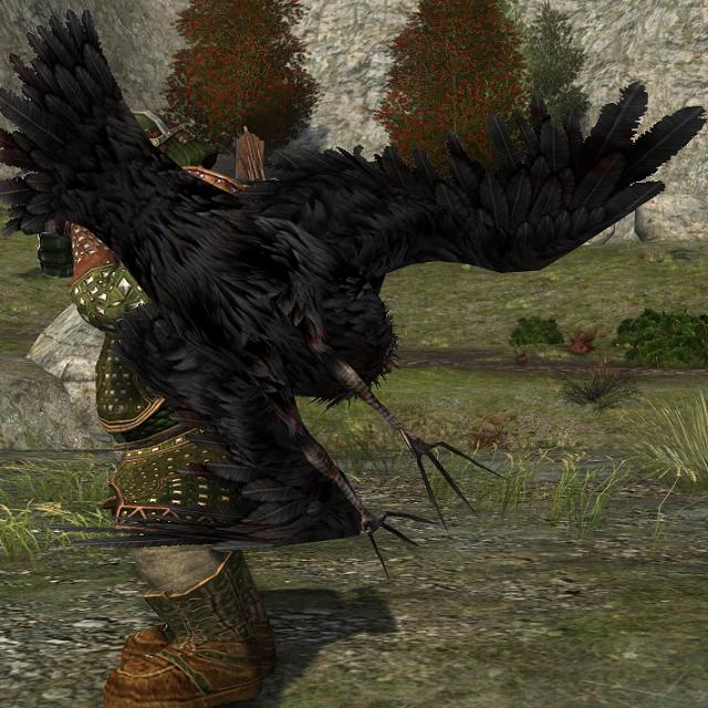 Crow photobomb