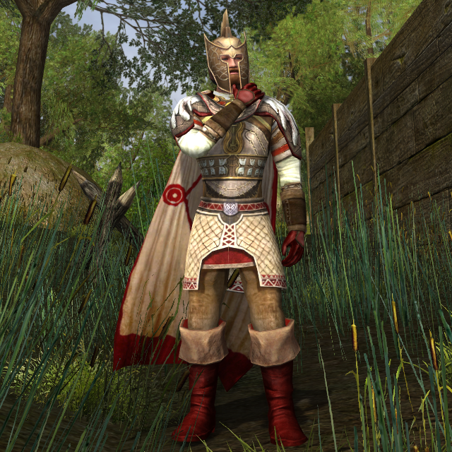 The warden of Brethil
