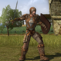 This outfit was purchased from a vendor, and then customised with sienna, rust, and grey dyes.